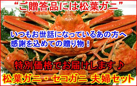 ご贈答品にオススメ!松葉ガニ(雄)・セコガニ(雌)夫婦セット!