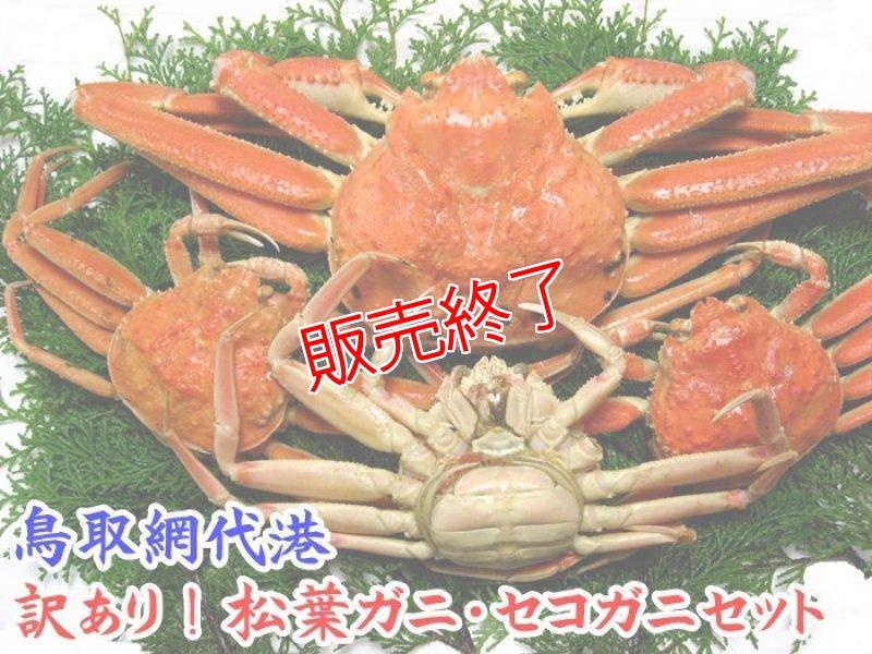 画像1: 訳あり!松葉ガニ・セコガニセット【松葉ガニ(中・1枚)&セコガニ(中・3枚)】 (1)