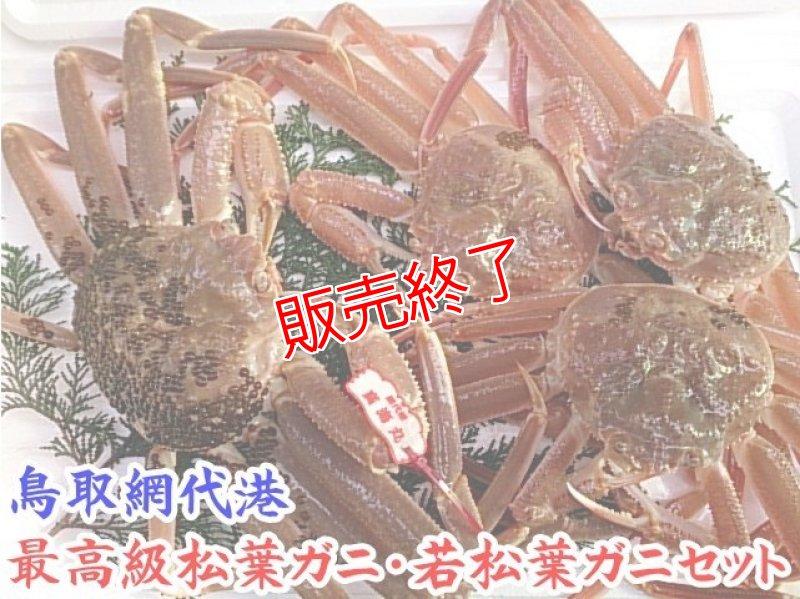 画像1: 最高級松葉ガニ・若松葉ガニセット【松葉ガニ(中・1枚)&若松葉ガニ(中・3枚)】 (1)