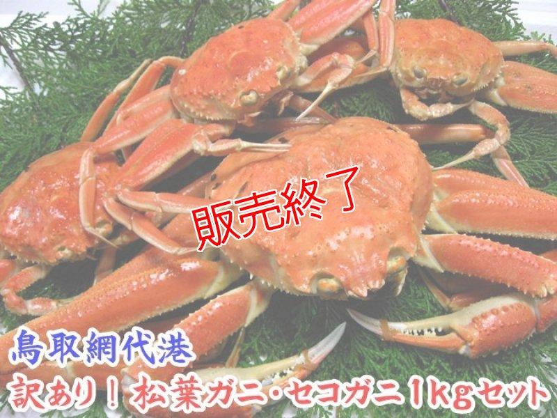 画像1: 訳あり!松葉ガニ・セコガニ1kgセット (1)