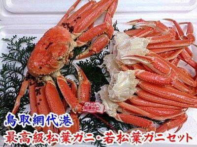 画像3: 最高級松葉ガニ・若松葉ガニセット【松葉ガニ(大・1枚)&若松葉ガニ(中・3枚)】