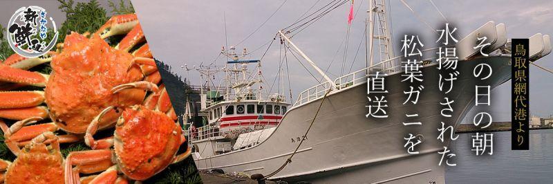 鳥取県網代港より その日の朝水揚げされた松葉ガニを直送
