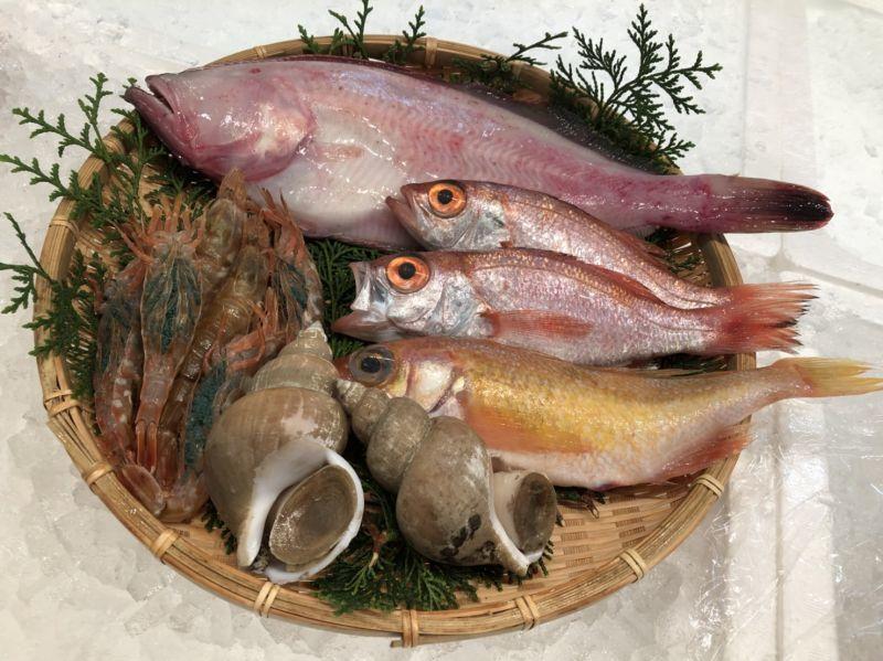 画像1: 朝獲れ直送!旬の天然魚セット【2人さま】 (1)