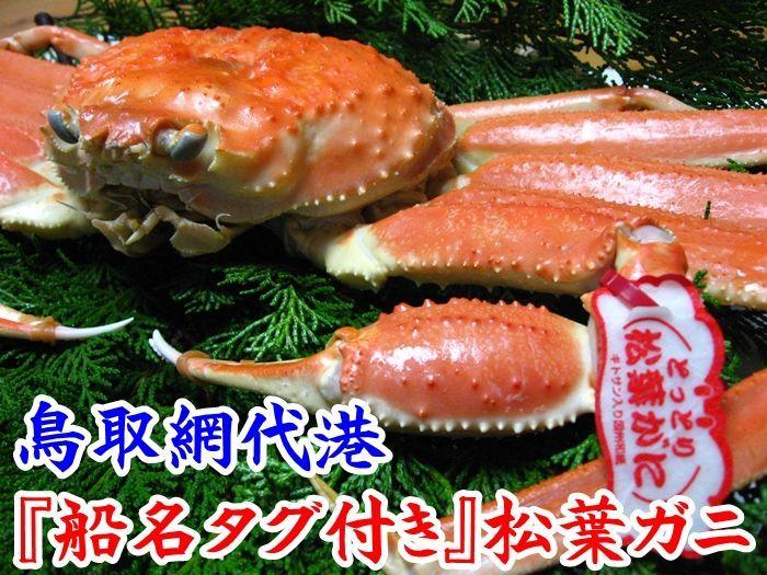画像1: お手頃価格 最高級松葉ガニ【中】700g以上 (1)
